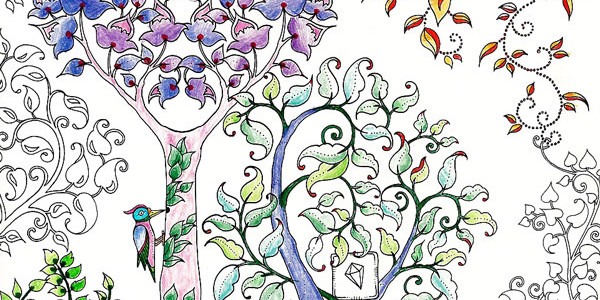 Category Coloring Books Enchanted Forest